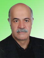 سید مهدی کاظمی